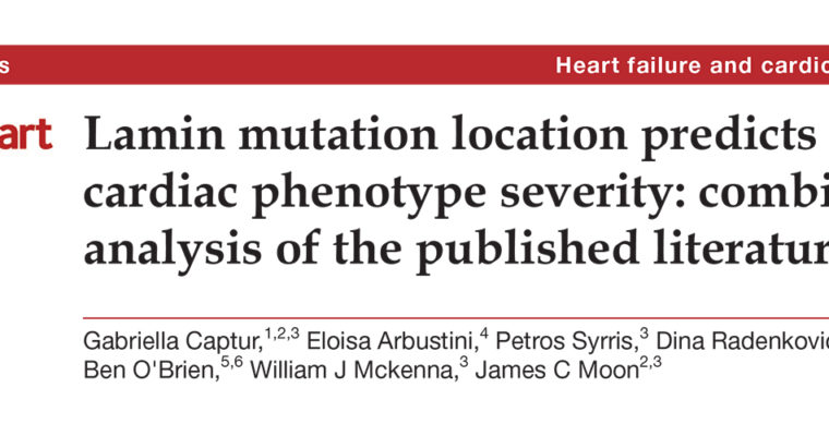 Lamin mutation location predicts cardiac phenotype severity: combined analysis of the published literature