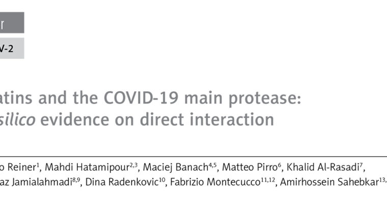 Statins and the COVID-19 main protease: in silico evidence on direct interaction